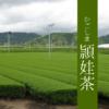 鹿児島のお茶:頴娃茶