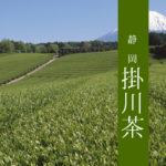 【静岡茶】最高級煎茶と芽茶と幻の棒茶